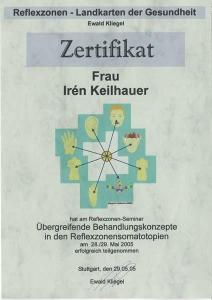 Reflexzonen-Seminar_II